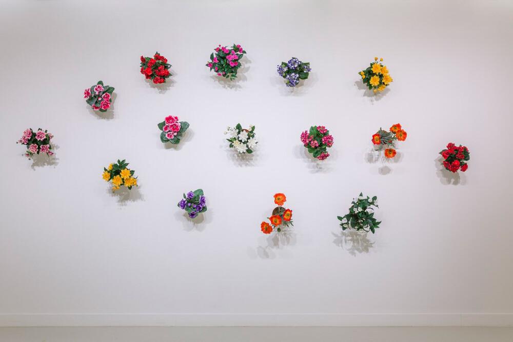 Hans-Peter Feldmann - © Galerie des Galeries