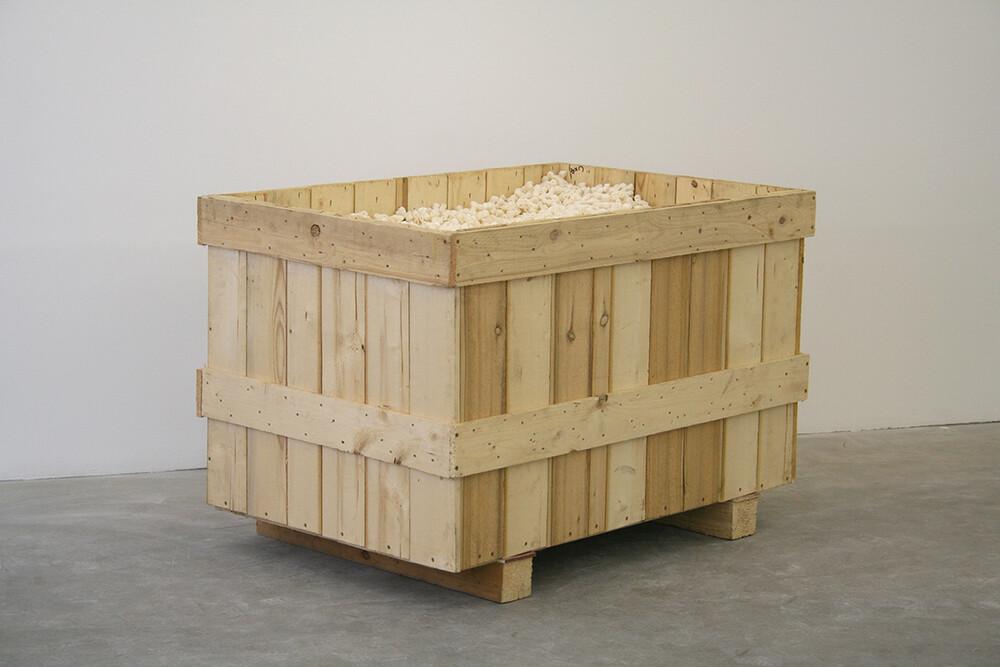 Davide Balula - © Galerie des Galeries